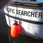 Как чаще всего люди используют поисковые запросы?